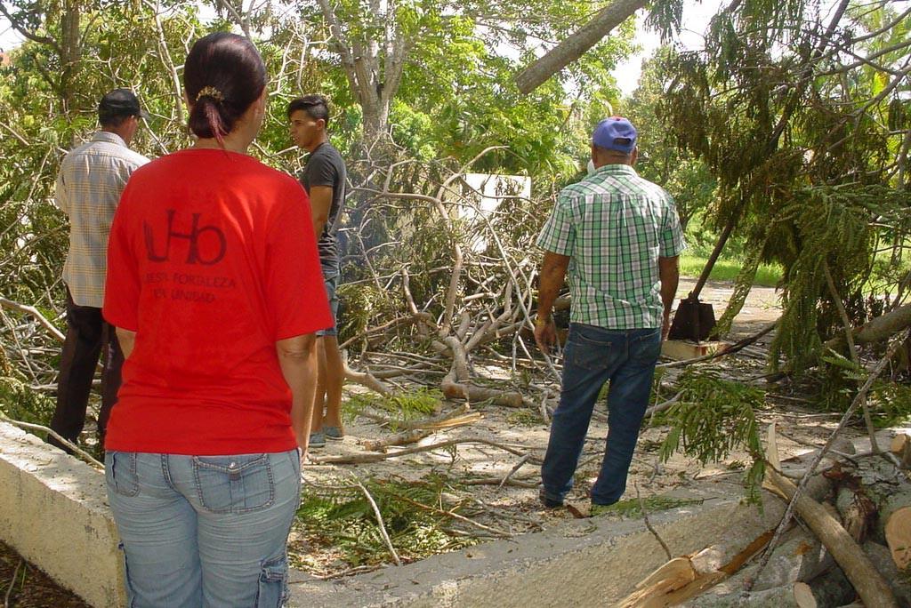 Los trabajadores de la Universidad de Holguín se incorporaron a las labores de recuperación tras el paso del Huracán Irma por Cuba.  UHO FOTO/Francisco Rojas González.